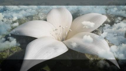 flowerend